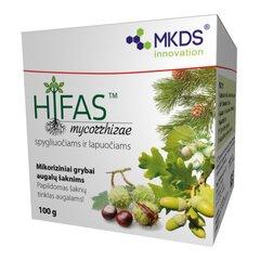 MKDS HIFAS™ spygliuočiams ir lapuočiams kaina ir informacija | Mikroorganizmai, bakterijos | pigu.lt