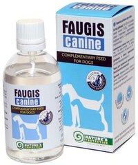 Nature's Protection Faugis Canine silicio papildas šunims kaina ir informacija | Vitaminai, papildai, antiparazitinės priemonės šunims | pigu.lt