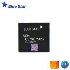 BlueStar Battery Sony Ericsson X8 WT19i U5 U8 Li-Ion 1000 mAh Analog EP-500 kaina ir informacija | BlueStar Battery Sony Ericsson X8 WT19i U5 U8 Li-Ion 1000 mAh Analog EP-500 | pigu.lt