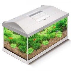 Akvariumas Aquael Leddy Set 54L White su įranga kaina ir informacija | Dekoracijos akvariumams | pigu.lt