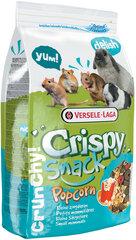 Пищевая добавка для грызунов Versele-Laga, 650г цена и информация | Пищевая добавка для грызунов Versele-Laga, 650г | pigu.lt