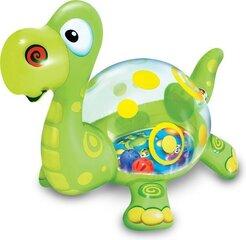 Pripučiamas dinozauras su kamuoliukais