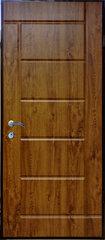 Lauko durys ARMAT2-116 86D, auksinis ąžuolas kaina ir informacija | Lauko durys | pigu.lt