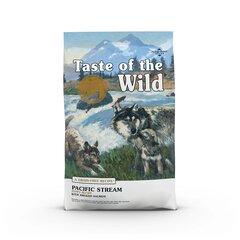 Taste of the Wild Pacific Stream Puppy sausas begrūdis šunų maistas su lašiša mažiems šuniukams, 2 kg kaina ir informacija | Sausas maistas šunims | pigu.lt