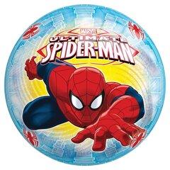 Kamuolys John Spider Man (Žmogus Voras), 230 mm, 54307sp kaina ir informacija | Vandens, smėlio ir paplūdimio žaislai | pigu.lt