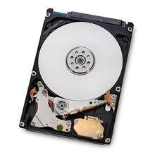Hitachi Travelstar 5K1000 5400 RPM, 1000 GB, HTS541010A9E680