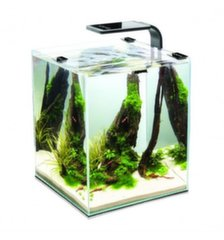 Akvariumas SHRIMP SET SMART 2 20 Black