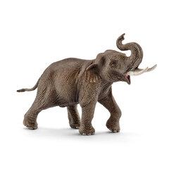 Azijos dramblys, Schleich