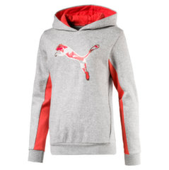 Puma bluzonas Style Graphic Hoody, Light Gray Heather
