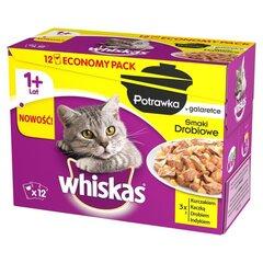 WHISKAS 12x85g Mix vištienos skoniai, šlapias pašaras katėms 1+ kaina ir informacija | WHISKAS 12x85g Mix vištienos skoniai, šlapias pašaras katėms 1+ | pigu.lt