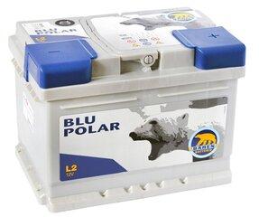 Akumuliatorius BAREN POLAR BLU 50Ah 520A kaina ir informacija | Akumuliatoriai | pigu.lt