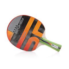 Stalo teniso raketė Spokey Fuse, FL **** kaina ir informacija | Stalo tenisas | pigu.lt