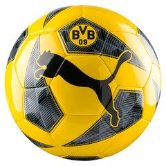 Futbolo kamuolys BVB Dortmund Fan Ball, 5 dydis kaina ir informacija | Futbolas | pigu.lt
