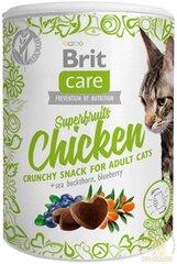 Brit Care skanėstai Superfruits su vištiena, 100 g kaina ir informacija | Brit Care skanėstai Superfruits su vištiena, 100 g | pigu.lt