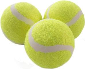 Lauko teniso kamuoliukai Schildkrot Magic-Sports, 3 vnt. kaina ir informacija   Lauko teniso prekės   pigu.lt