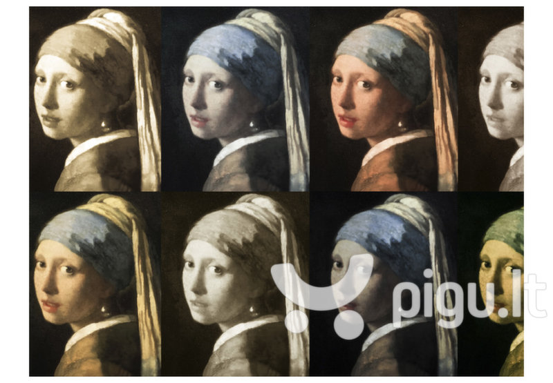 Fototapetas - Girl with a pearl earring (Pop art) atsiliepimas