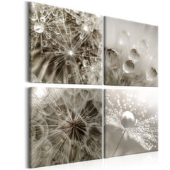 Paveikslas - Grey Dandelion kaina ir informacija | Reprodukcijos, paveikslai | pigu.lt