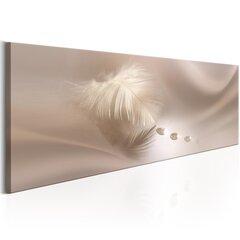 Paveikslas - Delicate Feather kaina ir informacija | Paveikslas - Delicate Feather | pigu.lt