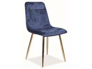 4-ių kėdžių komplektas Signal Meble Eros, mėlynas kaina ir informacija | Virtuvės ir valgomojo kėdės | pigu.lt