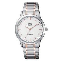Мужские часы Q&Q Q946J411Y цена и информация | Мужские часы | pigu.lt