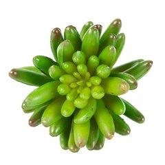 Dirbtinė gėlė - sukulentas kaina ir informacija | Dirbtinės gėlės | pigu.lt
