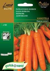 Valgomosios morkos Karotela
