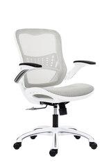 Biuro kėdė Wood Garden Dream, balta kaina ir informacija | Biuro kėdės | pigu.lt