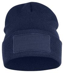 Kepurė Clique Hubert Patch, mėlyna kaina ir informacija | Kepurė Clique Hubert Patch, mėlyna | pigu.lt