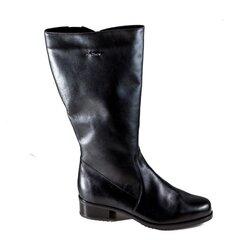 Žieminiai ilgaauliai batai Aaltonen kaina ir informacija | Aulinukai, ilgaauliai batai moterims | pigu.lt
