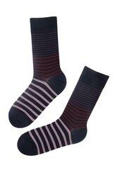 Stilingos medvilninės kojinės vyrams William, juodos su dryžiais kaina ir informacija | Vyriškos kojinės | pigu.lt
