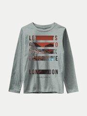 Marškinėliai berniukams 13186850 цена и информация | Рубашка для мальчиков | pigu.lt