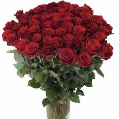 Ilgos raudonos rožės 31 vnt. kaina ir informacija | Gyvos gėlės | pigu.lt