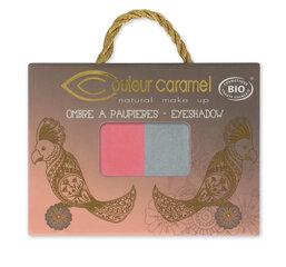 Dvigubi šešėliai akims Couleur Caramel 2.5 g kaina ir informacija | Dvigubi šešėliai akims Couleur Caramel 2.5 g | pigu.lt