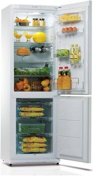 Snaigė RF34SM-P100273 kaina ir informacija | Šaldytuvai | pigu.lt