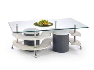 Staliuko ir pufų komplektas Nina 5, skaidrus/baltas/pilkas kaina ir informacija | Kavos staliukai | pigu.lt