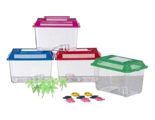 Akvariumas plastikinis 27,5 x 17 x 15 cm kaina ir informacija | Akvariumai ir jų įranga | pigu.lt