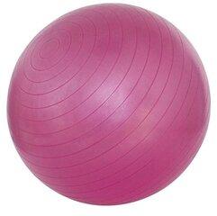 Gimnastikos kamuolys Avento 41VL 55 cm