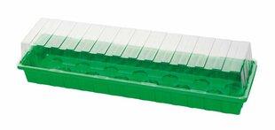 Šiltnaminė daigykla, 54x15x12cm kaina ir informacija | Vazonėliai daiginimui ir persodinimui | pigu.lt