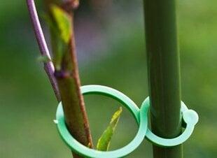 Augalų tvirtinimo žiedai, 50 vnt. kaina ir informacija | Sodo įrankiai | pigu.lt