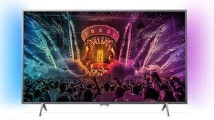 Philips 49PUS6401 kaina ir informacija | Televizoriai | pigu.lt