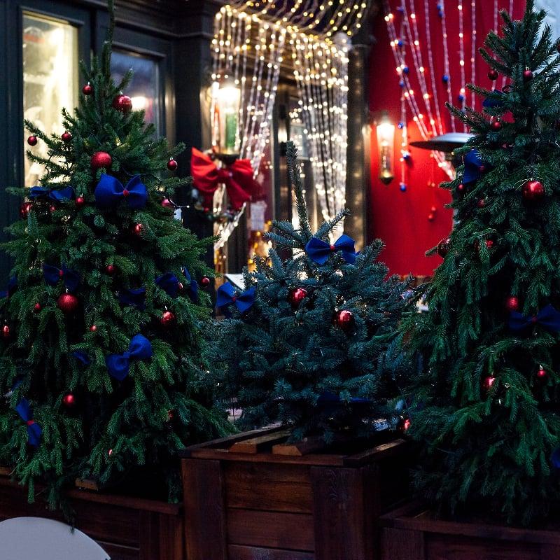 dekoreeritud jõulupuud õues